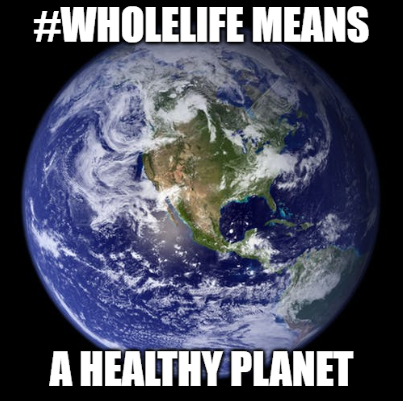 Wholelife means a healthy planet